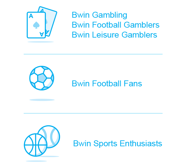 Custom segments created for bwin by OnAudience.com